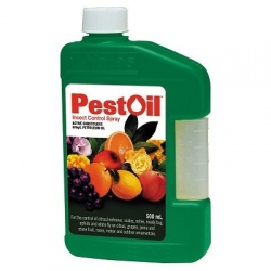 PEST OIL CONCENTRATE 500ML