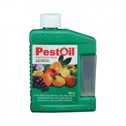 PEST OIL CONCENTRATE 200ML
